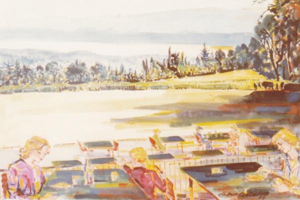 Blick auf den Zürichsee, 1979