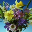 Des Gärtners Blumenstrauss
